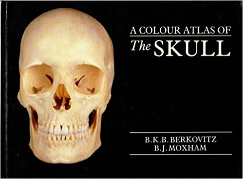 A Colour Atlas of the Skull