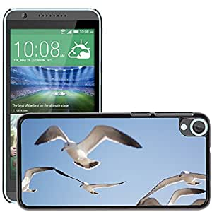 Hot Style Cell Phone PC Hard Case Cover // M00131171 Seagull Bird Sky Animal // HTC Desire 820