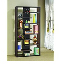 Coaster Home Furnishings 800265 Casual Bookcase, Cappuccino
