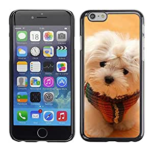 """Hot Style Cell Phone PC Hard Case Cover // M00100547 puppy animals // Apple iPhone 6 4.7"""""""