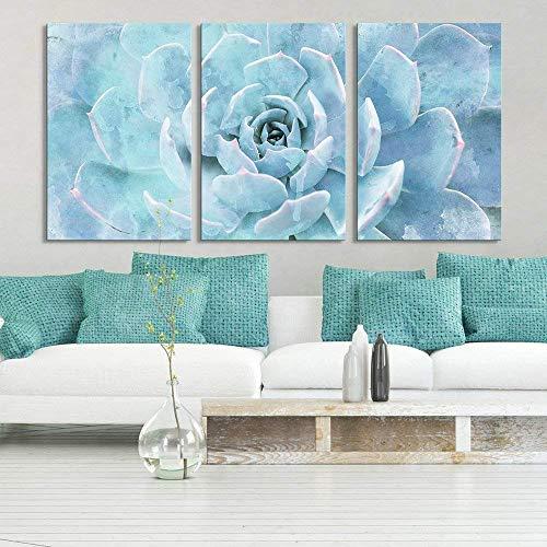 3 Panel Closeup of a Blue Succulent Plant x 3 Panels
