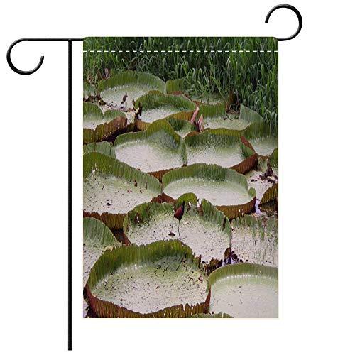 (BEICICI Double Sided Premium Garden Flag Victoria Amazonica and Amazonian Birds Decorative Deck, Patio, Porch, Balcony Backyard, Garden or Lawn)