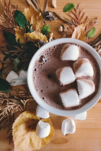 Hot Cocoa & Marshmallows: 150 Lined Journal Pages / Diary / Notebook Featuring a Cozy Mug of Hot Chocolate with Mini...