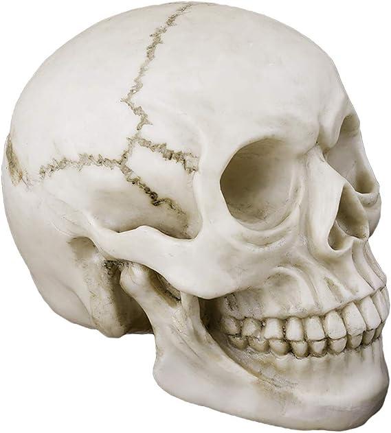Halloween personnage pour accrocher tete de mort avec 2 DEL Skull flippant 1,53x1,08 cm