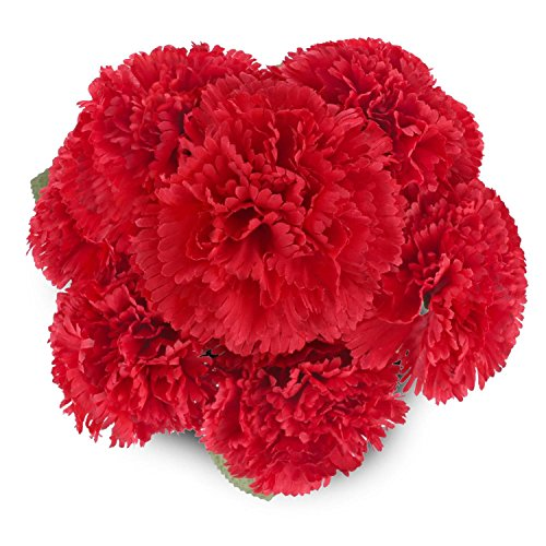Fake Silk Carnations Artificial Flowers SOLEDI 10 Heads for Bouquet DIY Party Wedding Home Bar Decor (Red)