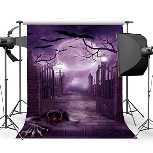 Halloween Night Moon (Hasdrop Halloween Backdrop 5X7FT Vinyl Horror Halloween Moon Night Backdrops Scary   Skull Bats Gothic Castle Gate Brick Floor Trick or Treat Photography Background for Masquerade Photo Studio)