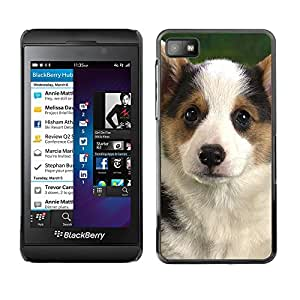 VORTEX ACCESSORY Hard Protective Case Skin Cover - Corgi Puppy Pembroke Welsh dog - Blackberry Z10