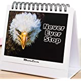 MoodyMotivators! - Daily Motivational & Inspirational Desk Quotes and Greeting Card Choices for Men & Women | Great Office Gift for Secretaries, Employees, Coworkers, Conference Giveaways