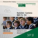 Cantatas for The Trinity Season: Liturgical Year with JS Bach