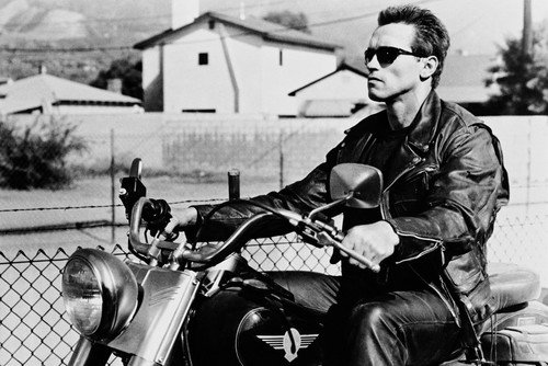 (Arnold Schwarzenegger riding Harley Fat Boy motorbike Terminator 2 24X36 Poster)