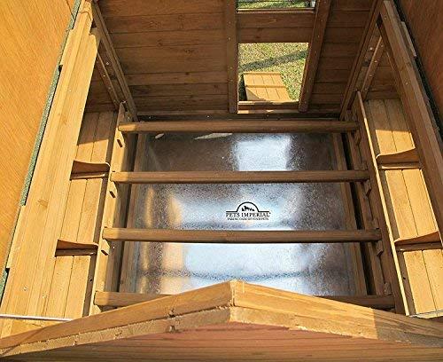 sehr leicht zu reinigen Chicken Coops Imperial/®- H/ühnerstall Marlborough gro/ß f/ür 6 bis 8 H/ühner Je nach Gr/ö/ße