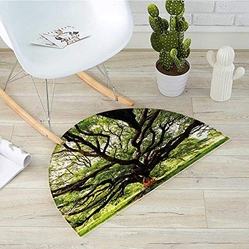 Nature Semicircular CushionThe Largest Monkey Pod Tree in Thailand Eastern Green Big Branches Growth Eco Photo Entry Door Mat H 19.7