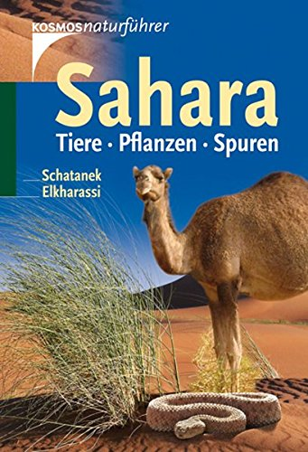 Sahara: Tiere, Pflanzen, Spuren