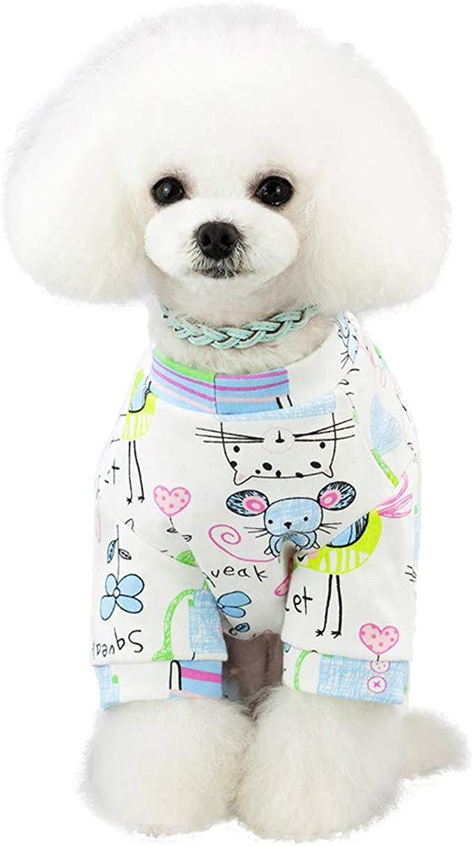 xlarge unisex dog clothes Dog  sweater hand knitted in blue with white Flowers Hand embroidery  flowers   In  sizes  xxxs