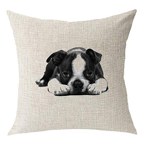 - Cotton Linen Cartoon Lovely Animal Abstract Oil Painting Adorable Pet Dogs Boston Terrier Throw Pillow Covers Cushion Cover Decorative Sofa Bedroom Living Room Square 18 inches