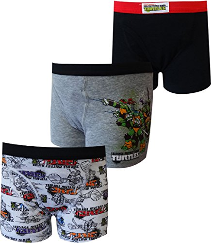 Teenage Mutant Ninja Turtles 3 Pack Boys Boxer Briefs for Li