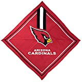 NFL Arizona Cardinals Full Color Fandana, L 3.5-Inch x W .5-Inch x H 6-Inch