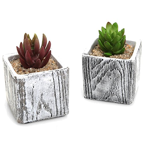 3 Inch Textured Cement Square Box Succulent Plant Pots / Natural Stone Design Cactus Planters - Set of 2