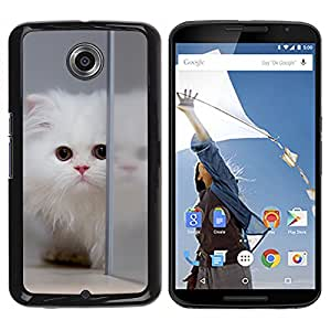 Hot Style Cell Phone PC Hard Case Cover // M99999905 Cat Kitty Animal Pattern // LG Google Nexus 6