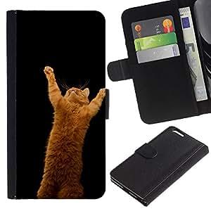 ULTIX Cases / Apple Iphone 6 PLUS 5.5 / CUTE FUNNY - ORANGE CAT / Cuero PU Delgado caso Billetera cubierta Shell Armor Funda Case Cover Wallet Credit Card