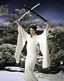 Lucy Liu 11x14 HD Aluminum Wall Art With Swords Raised