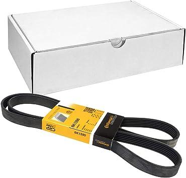 Contitech 6DPK1817/V-Ribbed Belts