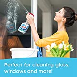 Windex Vinegar Glass and Window Cleaner Spray