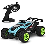 OWIKAR High Speed Remote Control Car, 1:16 2.4Ghz Electric RC Car Offroad Remote Control Car RTR RC Buggy RC Monster Truck, Best Christmas Gift for Kids and Adults (Blue)