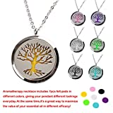 M.JVisun Beauty Essential Oil Perfume Diffuser Necklace Stainless Steel Frame Keeper Pendant