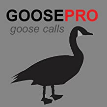 REAL Goose Hunting Calls App for Canada Goose Hunting (ad free) - BLUETOOTH COMPATIBLE