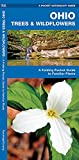 Ohio Trees & Wildflowers: A Folding Pocket Guide to Familiar Plants (A Pocket Naturalist Guide)
