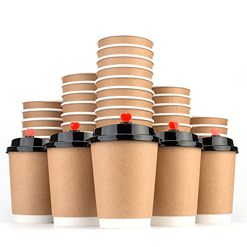 Disposable Coffee Cups Hot Insulated Paper Cups - With Lid and Stir Straw 12oz(50 Count) Double layer Insulated Eco Friendly Unspillable Sturdy Construction (12 OZ Paper cup - Concise, 50)