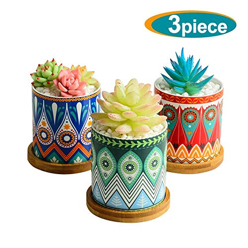Succulent Planter, 3 Inch Mini Succulent Pots Mandalas Pattern Ceramic Tiny Plant Pots for Cactus, with Drainage Hole, Bamboo Trays, Premium Gift for Family and Friends, Set of 3 ()