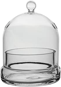 Syndicate Home Gardens Universal Indoor or Patio Glass Terrarium Cloche Casing with Built In Air Holes
