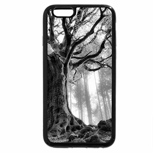 iPhone 6S Plus Case, iPhone 6 Plus Case (Black & White) - The rays of the Sun- autumn