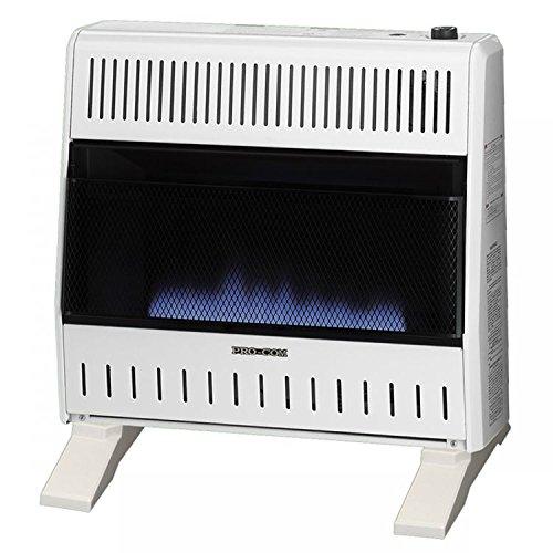 ProCom Dual Fuel Vent-Free Blue Flame Heater - 30,000 BTU, M