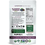 Biofinest Wild Blueberry Juice Powder - 100% Pure Freeze-Dried Extract Superfood - USDA Organic Vegan Raw Non-GMO - Boost Digestion Weight Loss - for Smoothie Beverage Blend (4 oz Resealable Bag)