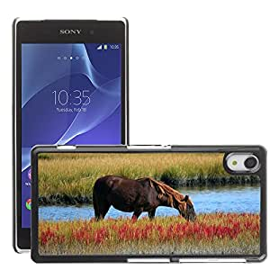 Hot Style Cell Phone PC Hard Case Cover // M00111333 Wild Horse Marsh Pony Grazing Swamp // Sony Xepria Z2 L50W