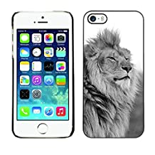 GRECELL CITY GIFT PHONE CASE /// Cellphone Protective Case Hard PC Slim Shell Cover Case for iPhone 5 / 5S /// king lion black white mane powerful