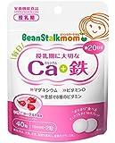 ビーンスタークマム 毎日カルシウム+鉄 40粒 (20日分)