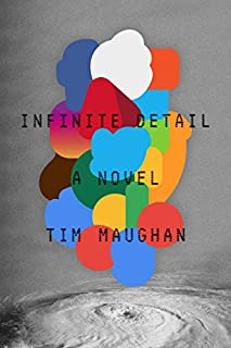 Book Cover: Infinite Detail: A Novel