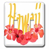 3dRose Taiche - Typography - Hawaii - Hawaii Text With Aloha Hibiscus Garland - Light Switch Covers - double toggle switch (lsp_273636_2)
