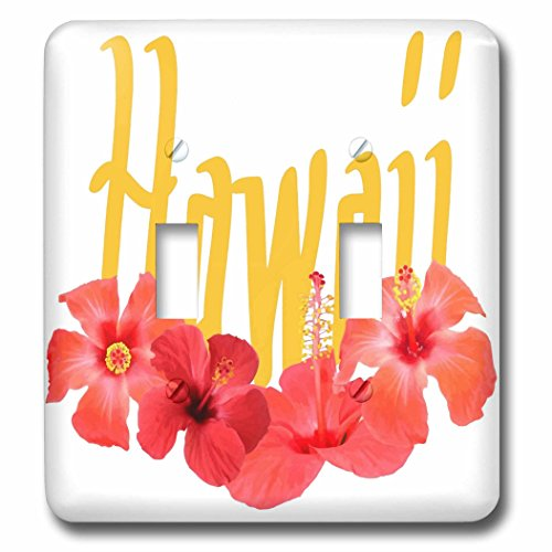 3dRose Taiche - Typography - Hawaii - Hawaii Text With Aloha Hibiscus Garland - Light Switch Covers - double toggle switch (lsp_273636_2) by 3dRose