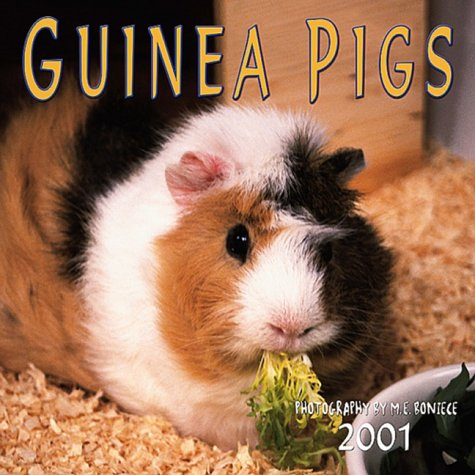Guinea Pigs 2001 Calendar - Guinea Pigs 2001 Calendar