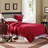 European Style Luxury Quilt Set Queen (1 Quilt 98''x90'' + 2 Matching Shams) 100% Cotton 3 Piece Solid Red Reversible Soft and Breathable Winter Wedding Bedspread Bed Collection Set
