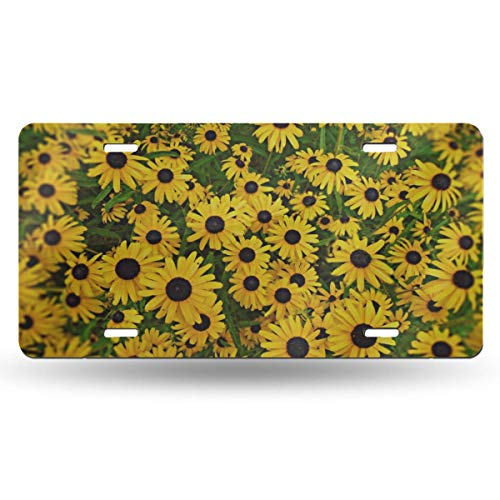 XINGCHENSS 4 Hole Custom License Plate for Men Vanity Tag Aluminum Car Accessories Novelty Car Tag Decoration Black Eyed Susan Flower Yellow Daisy Summer Garden Print Car Tag for Women 6x12 in (Flower That Looks Like A Black Eyed Susan)