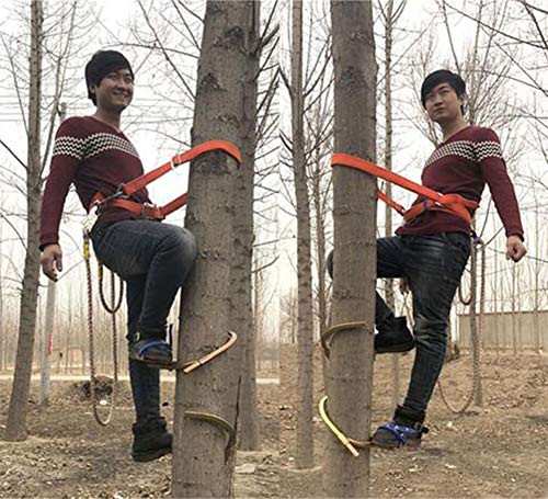 RENHAN Pole Climbing Spikes,Climbing Trees Artifact Electrician Wooden Pole Foot Buckle,Thicken Climbing Trees Tool,for Hunting Observation, Picking Fruit, Coconut, Simple to Use,400Model (Tree Climbing Gear)
