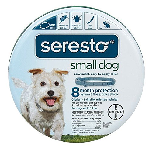 51XScJZea1L - Seresto Flea and Tick Collar For Dogs Small Under 18lbs (2-Pack)