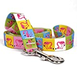 Yellow Dog Design Pink Flamingo Dog Leash, Small/Medium-3/4'' Wide and 5' (60'') long