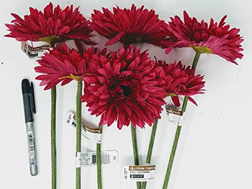 (Ashland 6 Hot Pink Gerber Daisy with brown center and apx 18 inch stem + 1 Hot Pink Mum + 5 Hot Pink varigated Dahlias(total 12)